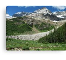 Meadow in the P6. Canvas Print
