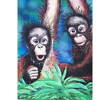 Forest Friends Photographic Print