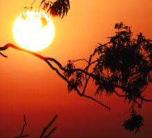 Fiery Sunrise  Sticker