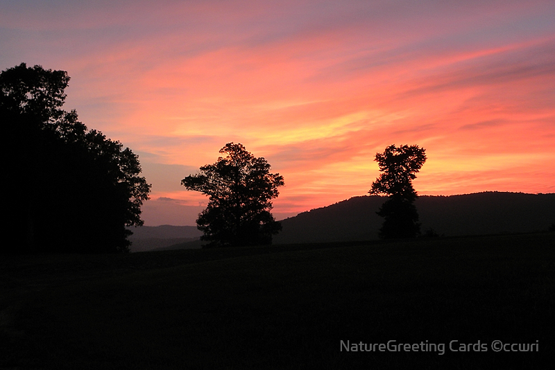 Ozark Sunset  by NatureGreeting Cards ©ccwri