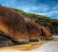 0156 Elephant Rock by DavidsArt