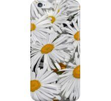 Pretty white daisies iPhone Case/Skin