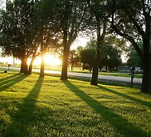 Golden Sunset by Scraylan