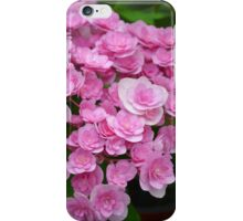 Pretty pink begonia flowers iPhone Case/Skin