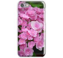 Pretty pink begonia flowers iPhone Case/Skin