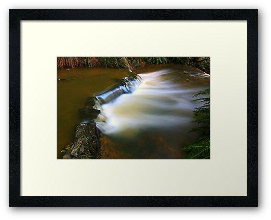 """""""Little Creek"""" by Husky"""