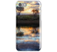 Pair o' Pricklies - Mulgildie Plateau, Tellebang, Queensland, Australia iPhone Case/Skin