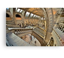 Natural History Museum Staircases Canvas Print