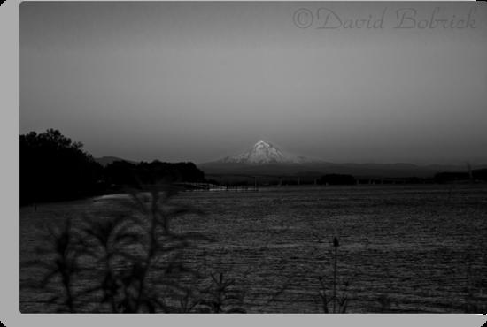 Mt. Hood Goes To Sleep by David Bobrick