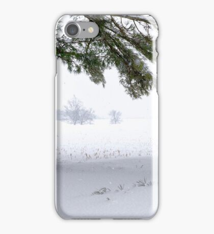 Pine Tree Framing Snow Scene iPhone Case/Skin