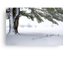 Pine Tree Framing Snow Scene Metal Print