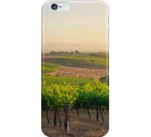Golden Vineyard  panorama iPhone Case/Skin