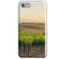 Golden Vineyard  panorama iPhone Case/Skin