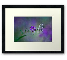 Mystery of light Framed Print