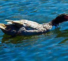 The Happy Ducky by AlexKokas