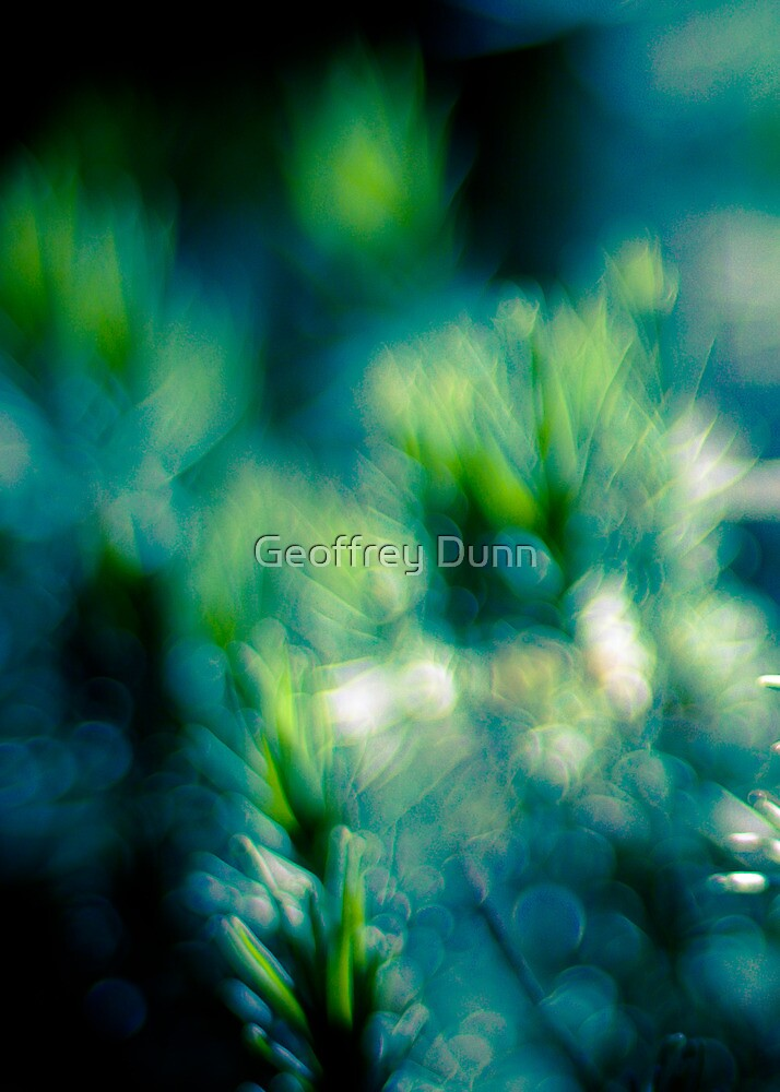 I thought you were sleeping by Geoffrey Dunn