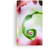 Spring Pearls Canvas Print