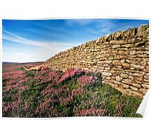 Bulbeck Common, Blanchland, Northumberland. UK Poster