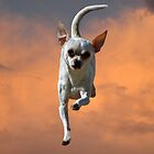 Chihuahua to the Rescue by Corri Gryting Gutzman