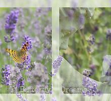 Butterfly Dreams - JUSTART © by JUSTART