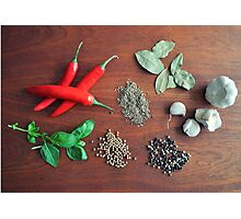 Herbs and Spices Photographic Print