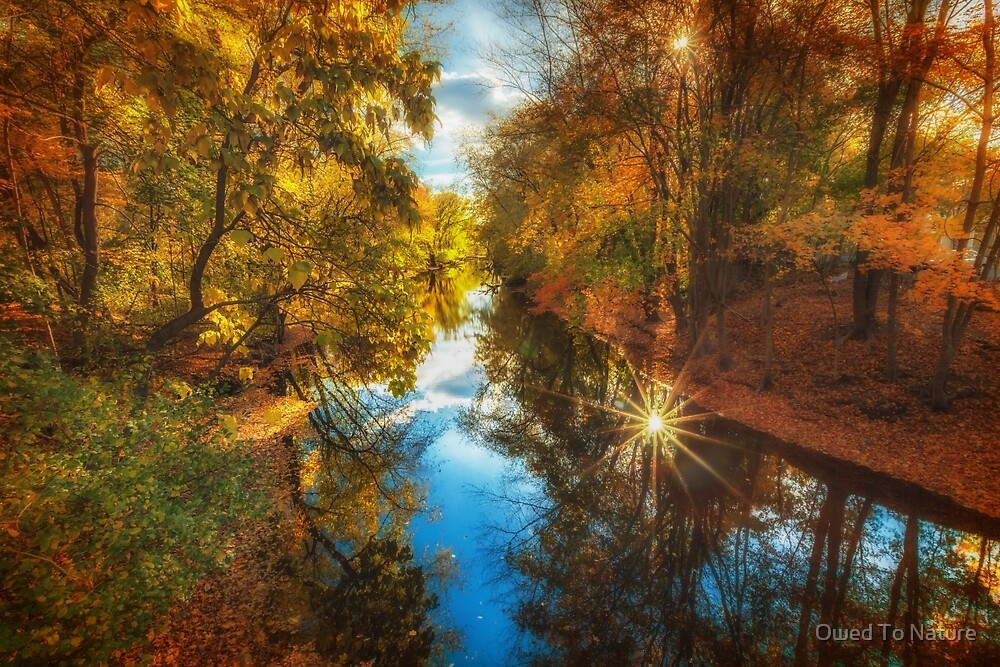Fall filtered reflections by Owed To Nature