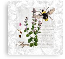 Shabby Chic Thyme herb Bumble Bee illustration art Canvas Print