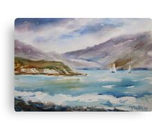 Irish shoreline Canvas Print