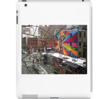 New York City High Line View iPad Case/Skin