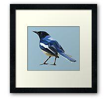 Blocky Blue Bird Framed Print