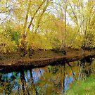 Autumn Reflections by Esperanza Gallego