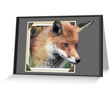 Framed Fox Greeting Card