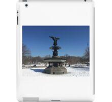 Central Park Bethesda Fountain iPad Case/Skin