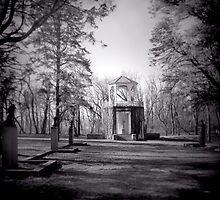 Sculpture Garden no.2 by R.E.  Traughber
