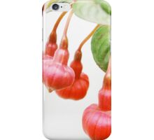 Hanging with Friends....Fuchsia triphylla iPhone Case/Skin