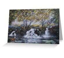 Stags by a waterfall Greeting Card