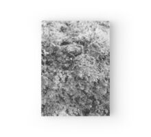 BW Moss Hardcover Journal
