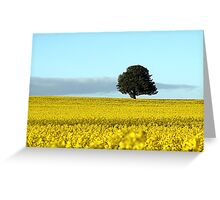 Fife's Golden Fields Of Rapeseed. Greeting Card