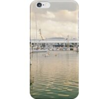Constitution Dock iPhone Case/Skin