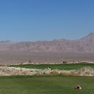 Golf Course in the middle of the desert in Las Vegas Nevada by Missy Yoder