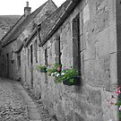 Cobbled Lane by emanon