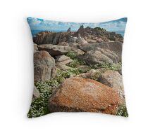 Rocks and Alyssum Throw Pillow