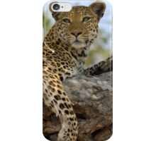 Watching the World iPhone Case/Skin