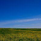 Nebraska Sky One by Tim Wright