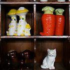 Salt'n'Pepper Shakers by Ashlee Betteridge