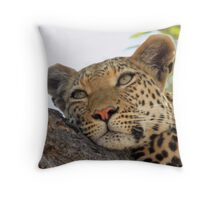 Time for a Rest Throw Pillow