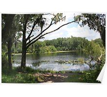 A Secret Hidden pond  Poster