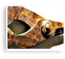 rusted blades Canvas Print