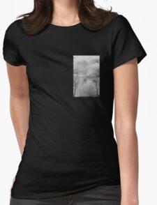 Homewrecker Womens Fitted T-Shirt