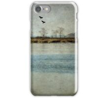 The River Of Time iPhone Case/Skin